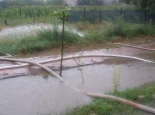 inundatii sannicolau mare (9)