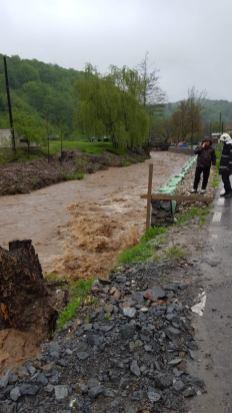 inundatii Timis mai 2019 (3)