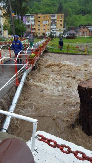 inundatii Timis mai 2019 (7)