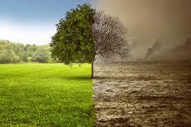 Lentini, Basta inquinamento e morte
