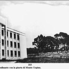 Il Liceo Dettori