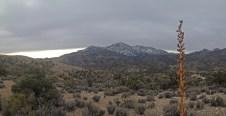 Snow at neighboring summit