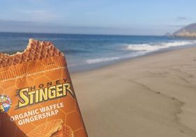 I'm dreaming of the ocean again… I had a Honey Stinger waffle last Sunday with this view! #hshive #stingorbeestung [instagram]