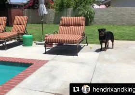 Sound on and watch 'til the end. .#Repost @hendrixandkingston with @get_repost・・・Wait for it. 😎🏾.(Best with) [instagram]