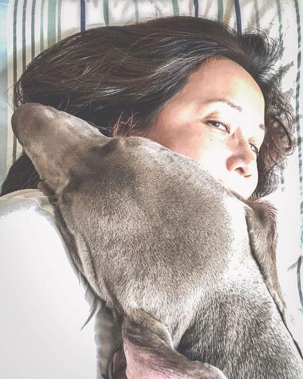 Current status 🤗……#weimaraner #weimlove #puppiesofinstagram #naptime #lazysunday