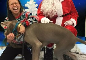 It's Sterling's first Christmas season, so naturally, we go visit Santa… This wasn't how I thought it would go, though.  After waiting for our turn, Sterling did NOT want to hang with Santa, even with All. The. TREATS. 🤣 Thanks to Petco, for trying lol! Maybe next year! It was for a great cause anyway. 🏽#pawsforacause @petco #pawsin @trupanion [instagram]