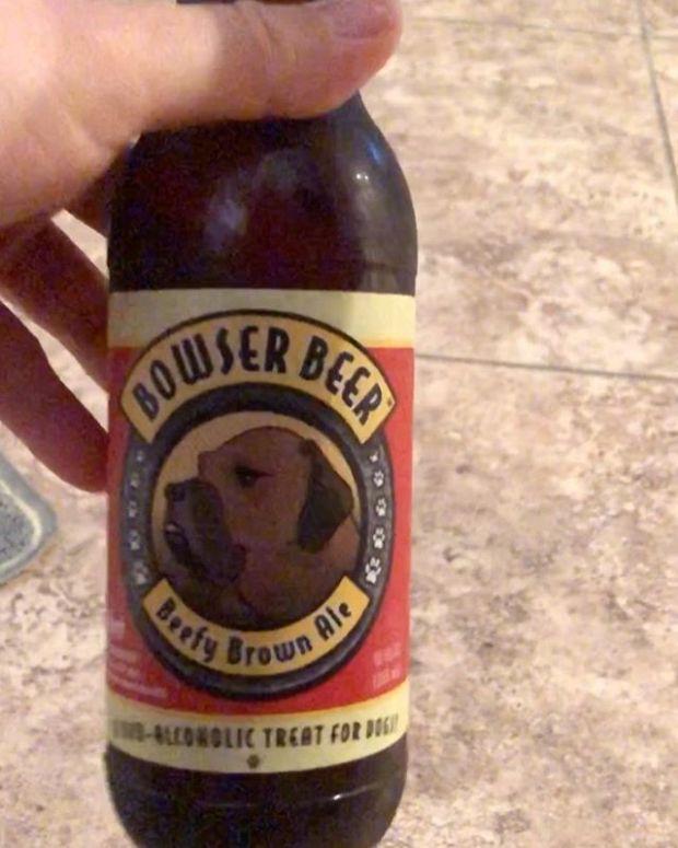 No one: I love drinking with my dog.Me:  #weimaraner #dogbeer #weimsofinstagram #dogsofinstagram  #lasvegasdogs #bowserbeer #michelobultra #teamultra