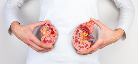 Фармацевтический удар по почкам – следствие самолечения