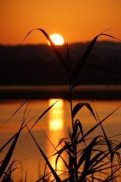 El Dorado Greifensee