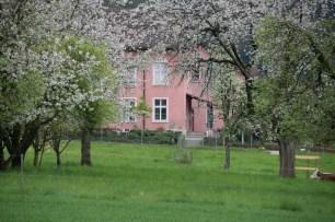 Altes Schulhaus Killwangen