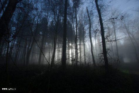 Die Sonne drückt durch den Nebel