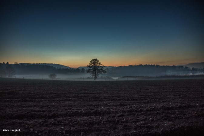 November Nebel Katzensee
