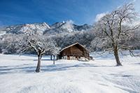 Winterlandschafti