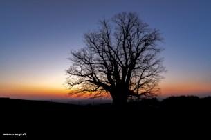 Morgengrauen im Aargau