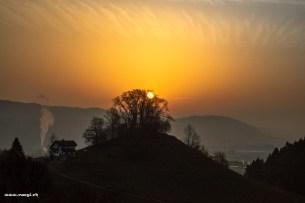 Sonnenaufgang hinter dem Buechbüehl