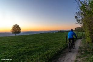 Singletrails auf dem Sennenberg