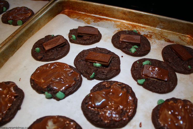 delicious 5 ingredient thin mint girls scout cookie copy cat recipe. THey really do taste just like thin mints