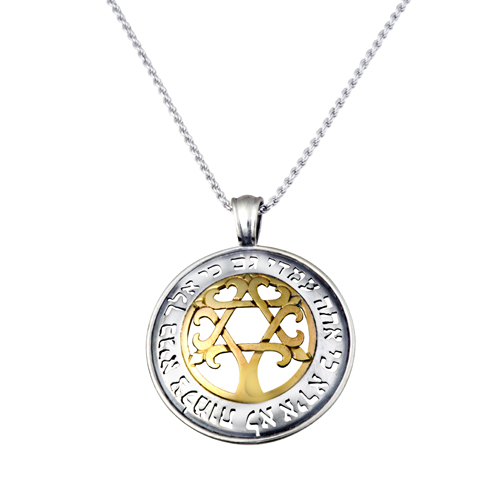 Psalm 23 silver with gold star of david tree of life pendant the product is already in the wishlist browse wishlist aloadofball Image collections