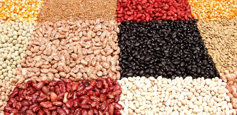 Legumi secchi: le proprietà, le ricette, la coltivazione