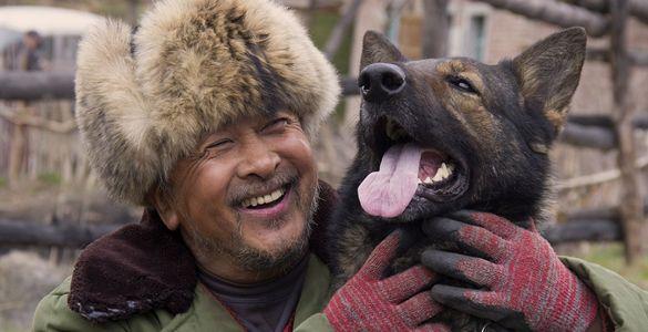 The Blood Hound, recenzie de film, filme chinezești