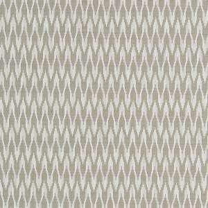 Apex Clarke & Clarke Fabric