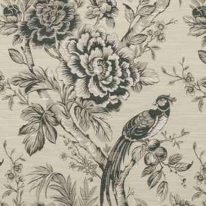 Avium Clarke & Clarke Fabric