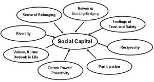 Social Capital Explained