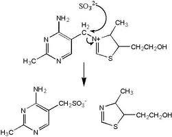 sulfites cleave thiamine