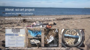 Littoral project