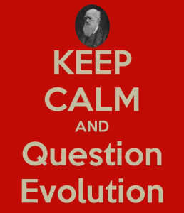 Question Evolution