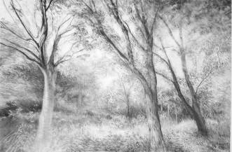 Park Trees in Spring by Adele Gregory
