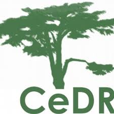 CeDR Disability Conference