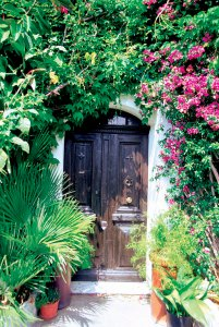 dark-door-with-pink-flowers