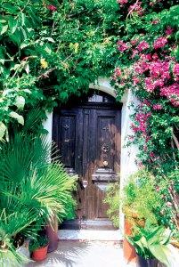 dark-door-with-pink-flowers
