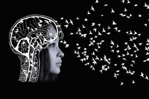 Image of woman's head with white outline of brain imposed on it with lots of little white birds flying out of it simulating brain signals going out like a brain involved in conscious living, meditation, etc.