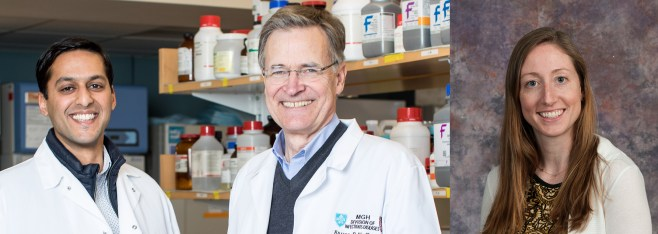 Ragon Institute study identifies viral peptides critical to natural HIV control
