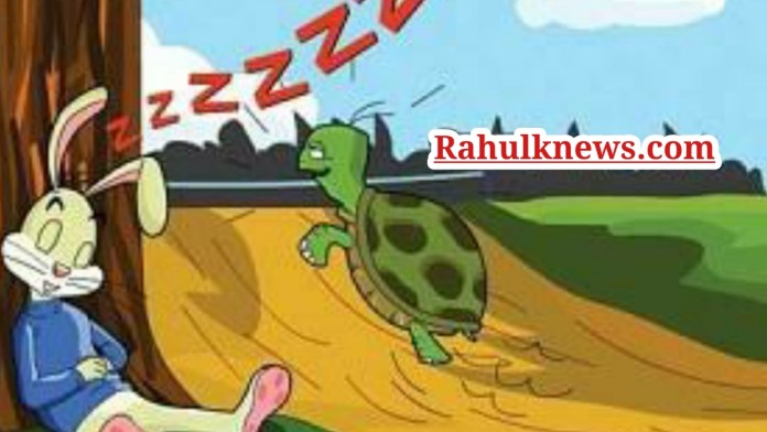 Rabbit And Tortoise Story In Hindi