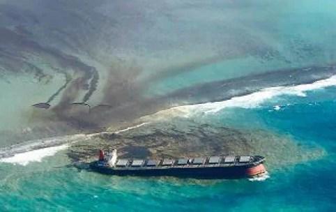 Disastro ambientale a Mauritius, i danni della petroliera incagliata - Photogallery - Rai News