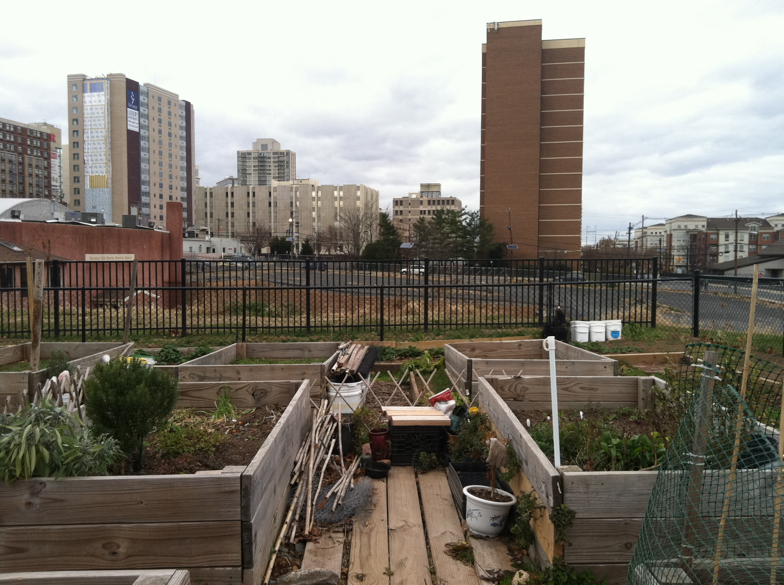 D.I.Y. Fridays – Building a Raised Garden Bed | The Raíces Cultural ...