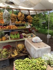 tropical_fruit_stand_209443