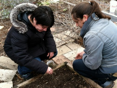 Planting our first seeds - March 2014