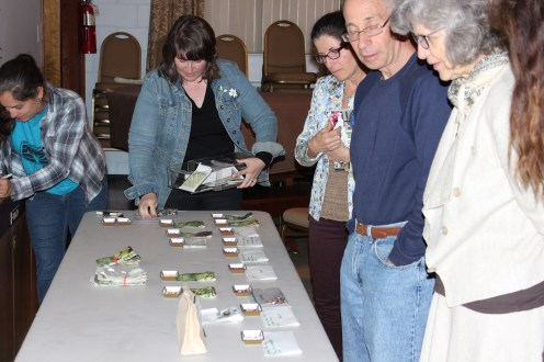 Choosing varieties of beans to grow and save as a new member of the Raíces EcoCulture Seed Library.