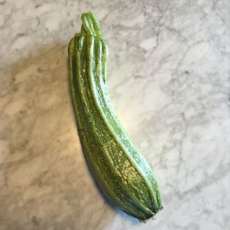 Costata Romanesco summer squash. Andreea will be testing the seeds saved from this variety in the 2017 growing season.