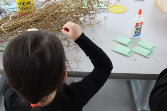 Many helping hands in our seed saving cooperative.