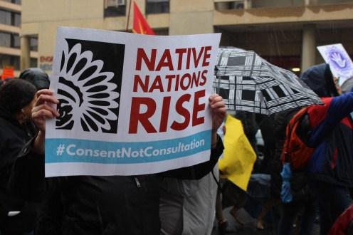nativenationsriseraices03