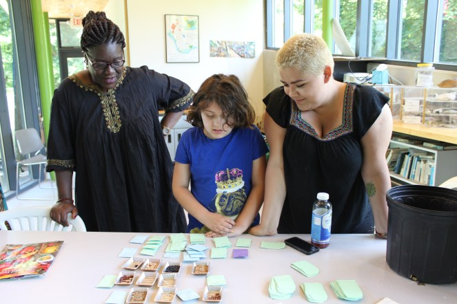 Workshop participants checking out different varieties of seeds that have been saved by Raíces Seed Library members.