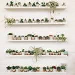24-vertical-garden-ideas-017