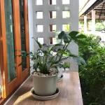 18-raikaset-Minimal-style-house-ideas-focusing-on-open-spaces022-20210711