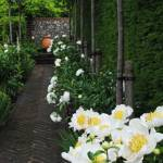43-raikaset-Ideas-for-a-beautiful-house-with-a-very-beautiful-garden020-20210712