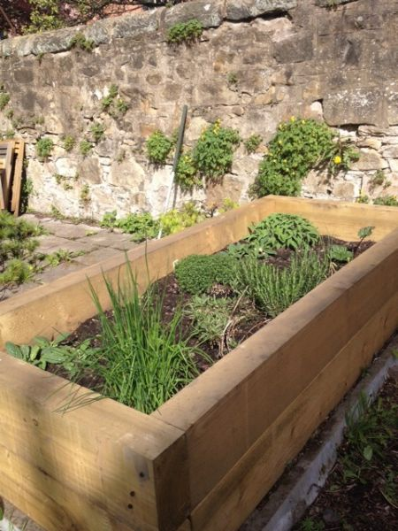 Raised Garden Concrete Blocks